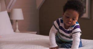 Bebê bonito que tem o divertimento que salta na cama dos pais