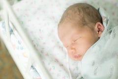 Bebê cinco dias velho Imagem de Stock