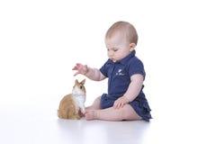 bebê com coelho Fotos de Stock Royalty Free