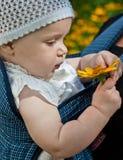 Bebê com flor Imagem de Stock Royalty Free