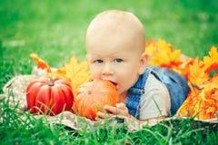 Bebê com olhos azuis no t-shirt e no romper das calças de brim que encontram-se no prado do campo de grama nas folhas de outono a Foto de Stock