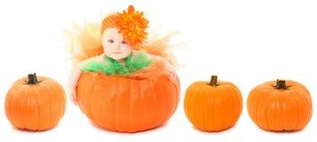 Bebê da abóbora Imagens de Stock