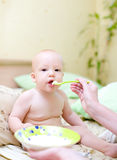 Bebê da alimentação da matriz pelo papa de aveia imagem de stock royalty free
