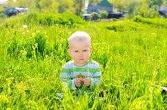Bebê da criança no fundo da grama do verão imagem de stock
