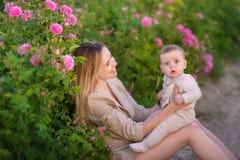 Bebê da terra arrendada da mulher no campo completamente de arbustos de rosas Estação de verão motherhood Tempo da família foto de stock royalty free