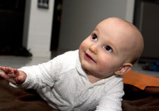 Bebê de rastejamento Fotografia de Stock