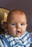Bebê de vista curioso Foto de Stock Royalty Free