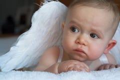Bebê do anjo Fotos de Stock