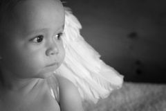 Bebê do anjo Imagens de Stock
