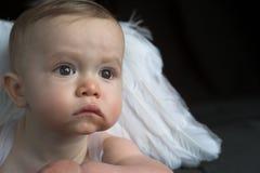 Bebê do anjo Imagem de Stock