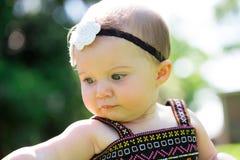 Bebê do bebê de seis meses fora Imagem de Stock