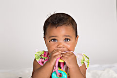 Bebê do bebê de sete meses que mastiga no brinquedo plástico Fotos de Stock Royalty Free
