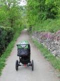 Bebê do carrinho de criança na madeira Imagens de Stock