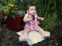 Bebê do jardim Fotos de Stock Royalty Free