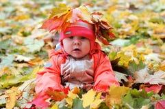 Bebê do outono fotografia de stock royalty free