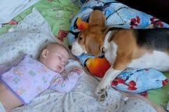 Bebê e cão de sono Fotografia de Stock Royalty Free