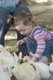 Bebê e coelhos Imagens de Stock Royalty Free