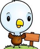 Bebê Eagle Wood Sign calvo dos desenhos animados Imagem de Stock
