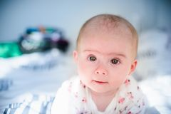 Bebê em uma cama que olha a câmera Fotos de Stock