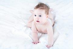 Bebê engraçado em um tecido que aprende rastejar Fotografia de Stock Royalty Free