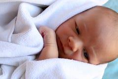 Bebê envolvido Fotos de Stock Royalty Free