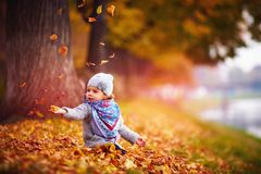 Bebê feliz adorável que trava as folhas caídas, jogando no parque do outono Imagens de Stock