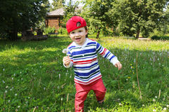Bebê feliz que corre com blowball Fotografia de Stock