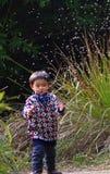 Bebê feliz que joga o dente-de-leão Imagem de Stock