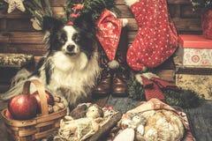 Bebê Jesus e cartões bonitos do xmas do cão Imagem de Stock Royalty Free