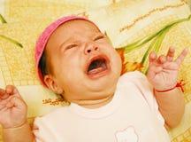 Bebê Maria #26 Foto de Stock