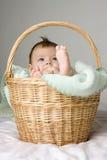 Bebê na cesta Fotos de Stock Royalty Free