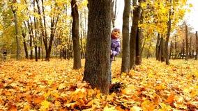 Bebê na floresta do outono video estoque