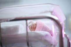 Bebê na incubadora Imagem de Stock Royalty Free