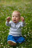Bebê na natureza Imagem de Stock Royalty Free