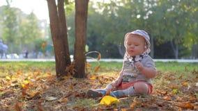 Bebê nas folhas de outono de queda da floresta Movimento lento 100 FPS video estoque