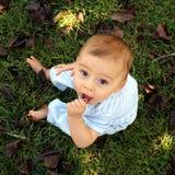 Bebê natural Foto de Stock Royalty Free