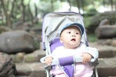 Bebê no carrinho de criança Fotografia de Stock Royalty Free