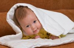 Bebê no cobertor Foto de Stock