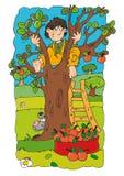 Bebê para cima uma árvore com maçãs e cão e escada que inclina-se contra o tronco cômico para crianças Imagem de Stock