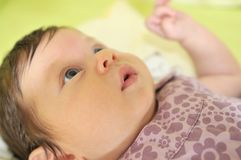 Bebê pequeno bonito interno Foto de Stock