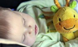 Bebê pequeno bonito que dorme com um brinquedo Foto de Stock Royalty Free