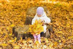 Bebê pequeno com folhas de outono foto de stock