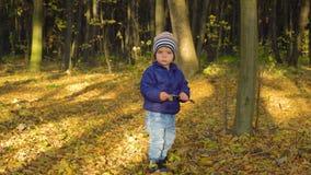 Bebê pequeno de sorriso que joga no parque outono folhas de bordo amarelas 4k video estoque