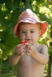 Bebê pequeno no chapéu de Panamá que guarda uma framboesa Fotografia de Stock