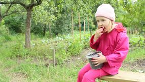 Bebê pequeno que come a framboesa preta da cubeta Criança que aprecia bagas da framboesa preta video estoque