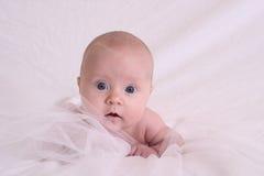Bebê precioso Imagem de Stock