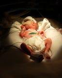 Bebê prematuro uma libra Imagem de Stock Royalty Free
