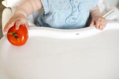 Bebê que come vegetais tomate vermelho na mão da menina na cozinha ensolarada Nutrição saudável para crianças Alimento contínuo p fotos de stock royalty free