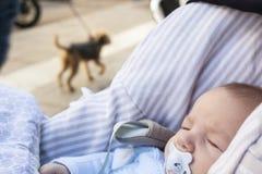 Bebê que dorme em seu carrinho de criança um o dia ensolarado foto de stock