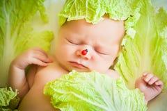 Bebê que encontra-se no repolho Fotos de Stock Royalty Free